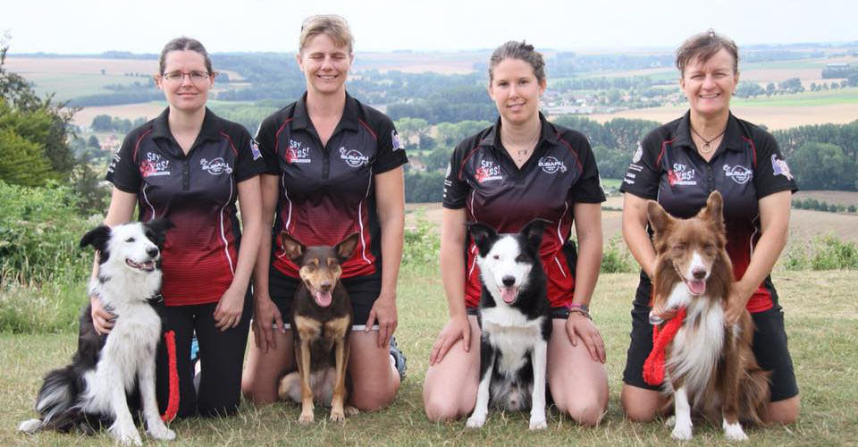 2016 EO Subaru Agility Team Canada Large Dog Team Finalists